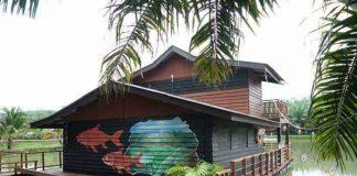 Star Fish Leisure Farm